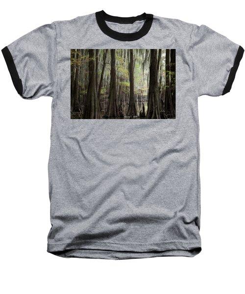 Bayou Trees Baseball T-Shirt