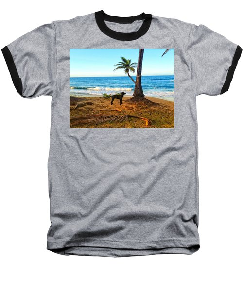 Beach Dog  Baseball T-Shirt