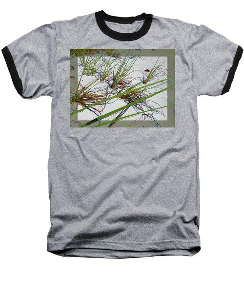 Beach Grass Baseball T-Shirt by Ginny Schmidt