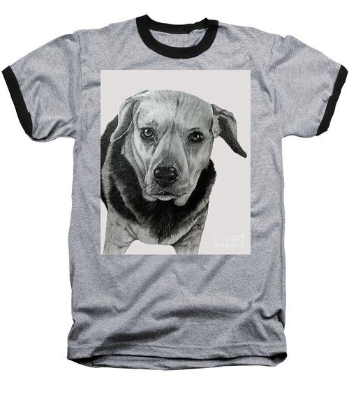 Beagle-shepherd Mix Baseball T-Shirt by Terri Mills