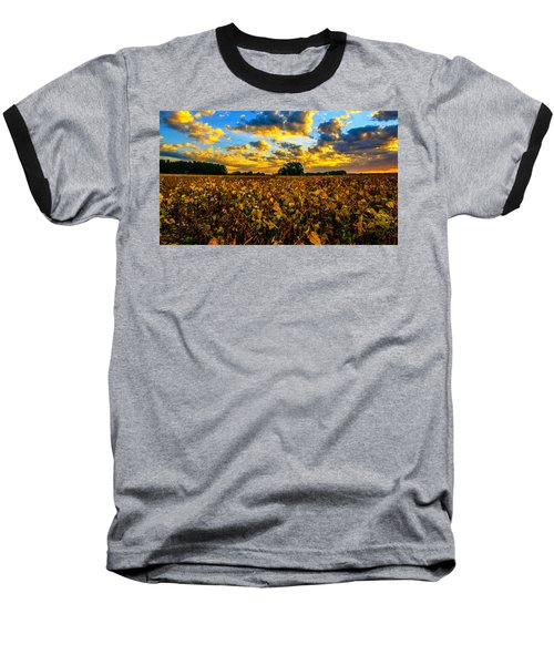 Bean Field Splendor  Baseball T-Shirt by John Harding