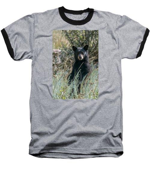 Baseball T-Shirt featuring the photograph Bear Cub At Waterton Canyon by Stephen  Johnson