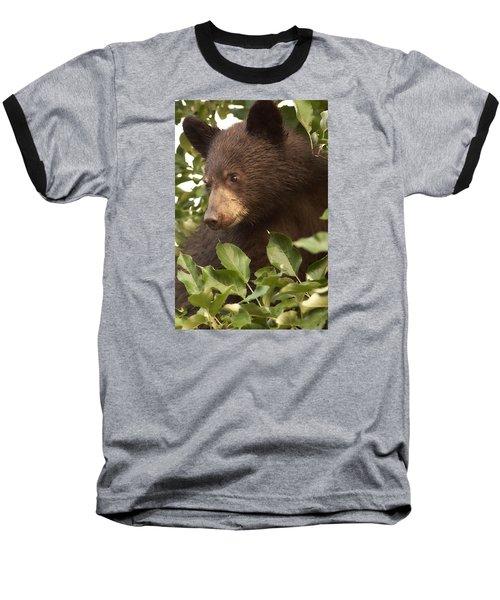 Bear Cub In Apple Tree1 Baseball T-Shirt by Loni Collins