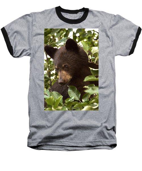 Bear Cub In Apple Tree2 Baseball T-Shirt