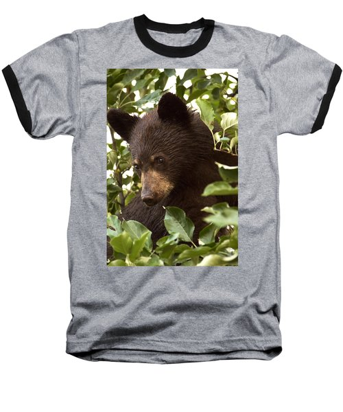 Bear Cub In Apple Tree2 Baseball T-Shirt by Loni Collins