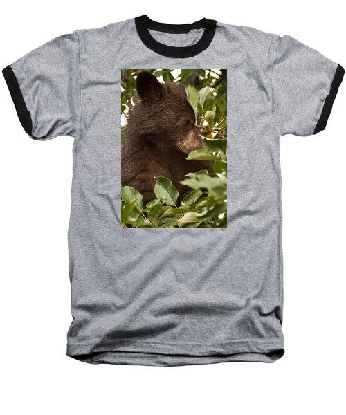 Bear Cub In Apple Tree3 Baseball T-Shirt