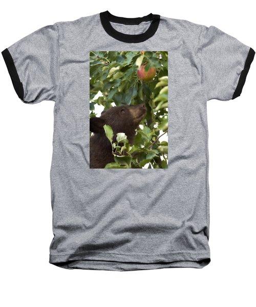 Bear Cub In Apple Tree4 Baseball T-Shirt by Loni Collins