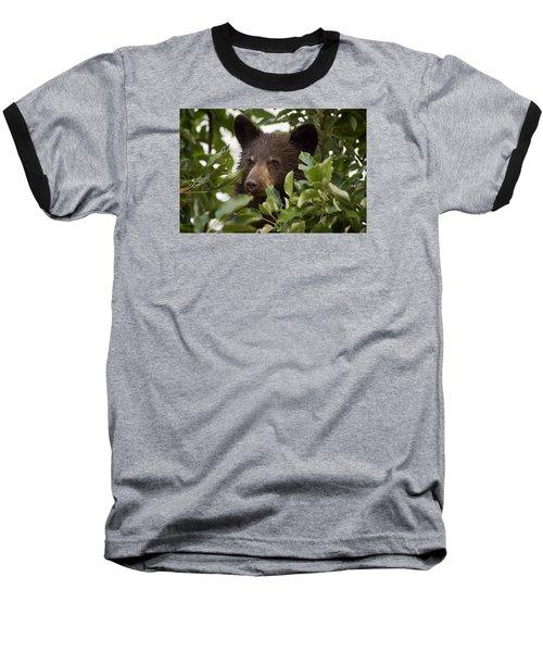 Bear Cub In Apple Tree6 Baseball T-Shirt by Loni Collins