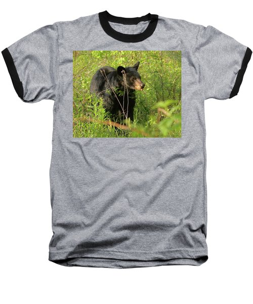 Bear In The Grass Baseball T-Shirt