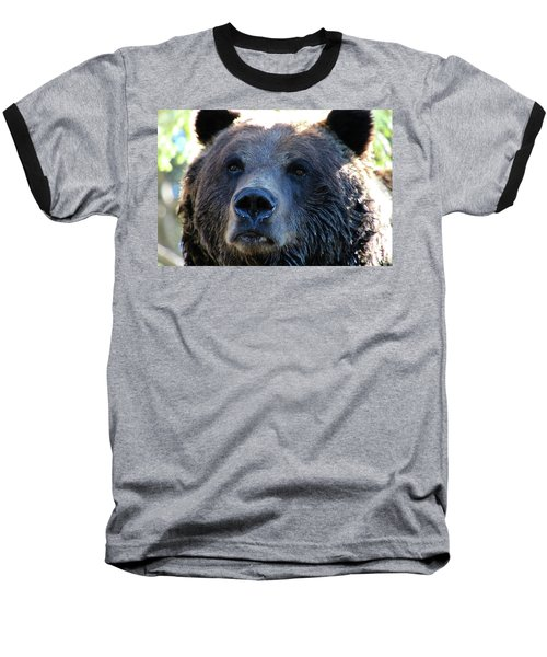 Bear On Grouse Baseball T-Shirt