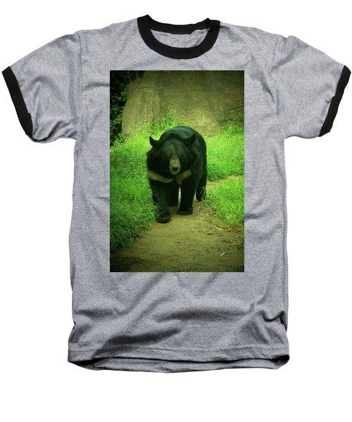 Bear On The Prowl Baseball T-Shirt by Trish Tritz