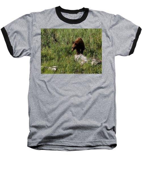 Bear1 Baseball T-Shirt by Loni Collins