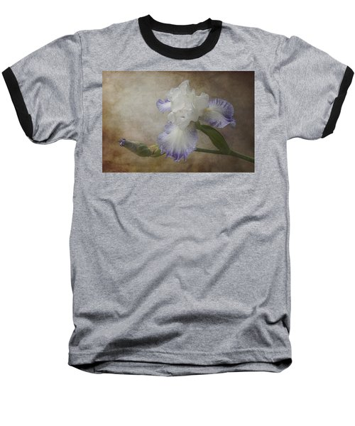 Bearded Iris Baseball T-Shirt by Patti Deters