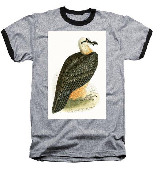 Bearded Vulture Baseball T-Shirt