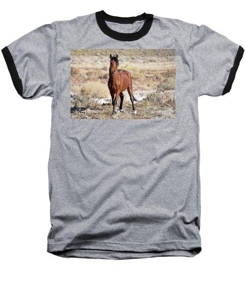 Beautiful Bay Baseball T-Shirt