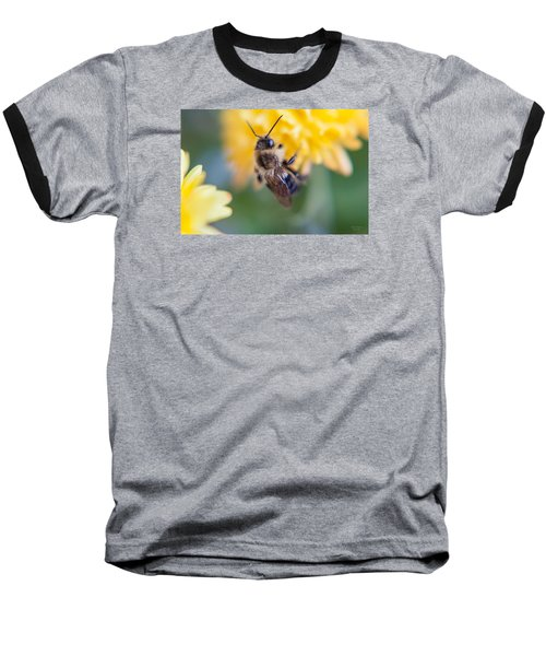 Beautiful Bee Baseball T-Shirt