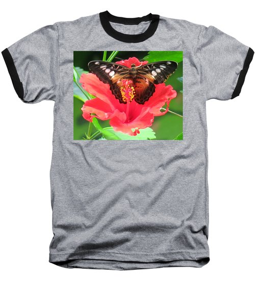 Beautiful Butterfly Baseball T-Shirt by Betty Buller Whitehead