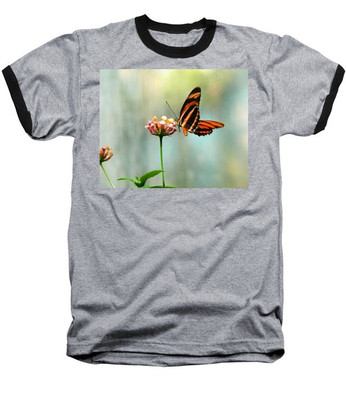Beautiful Butterfly Baseball T-Shirt by Laurel Powell