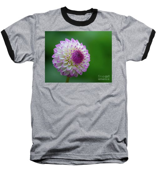 Beautiful Dahlia 1 Baseball T-Shirt