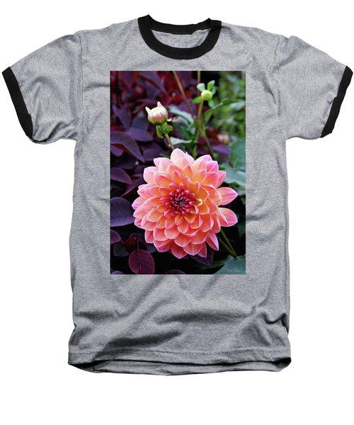 Beautiful Dahlia Baseball T-Shirt