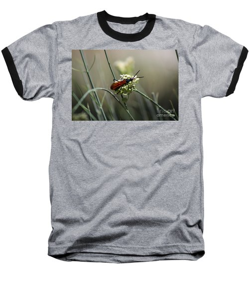 Beautiful Little Nightmare Baseball T-Shirt