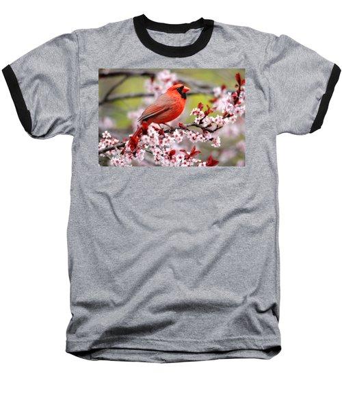 Beautiful Northern Cardinal Baseball T-Shirt by Trina Ansel
