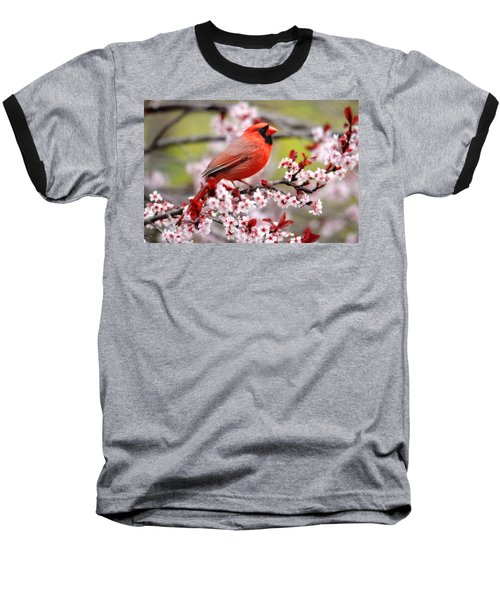 Beautiful Northern Cardinal Baseball T-Shirt
