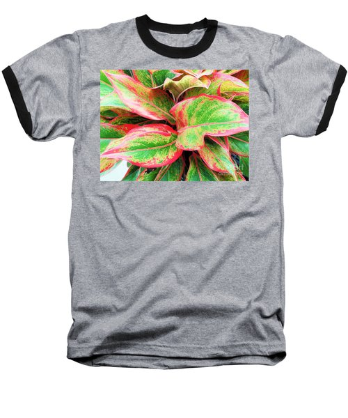 Baseball T-Shirt featuring the photograph Beautiful Red Aglaonema by Ray Shrewsberry