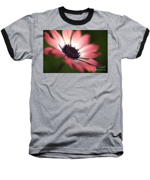 Beautiful Rich African Daisy Zion Red Flower Baseball T-Shirt