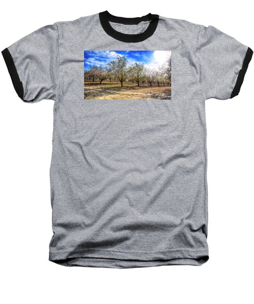 Beautiful Spring Garden  Baseball T-Shirt