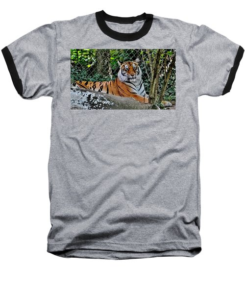Beautiful Tiger Baseball T-Shirt