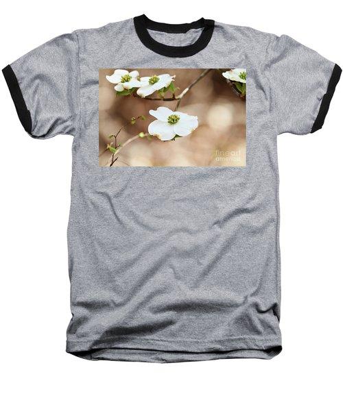 Beautiful White Flowering Dogwood Blossoms Baseball T-Shirt by Stephanie Frey