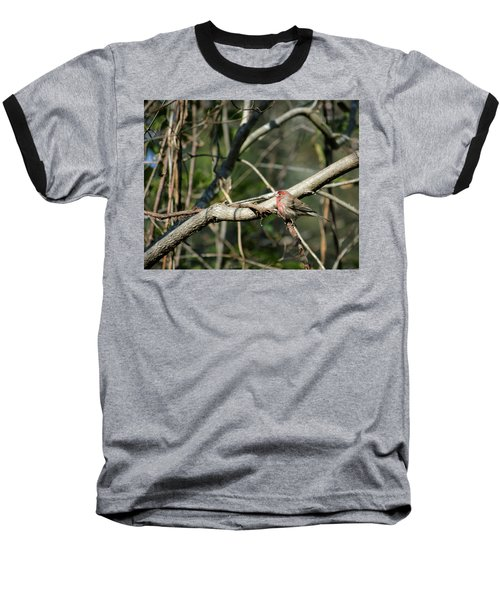 Baseball T-Shirt featuring the photograph Beautiful Winter Day by Cathy Harper