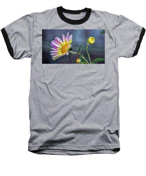 Beauty And The Beasts Baseball T-Shirt