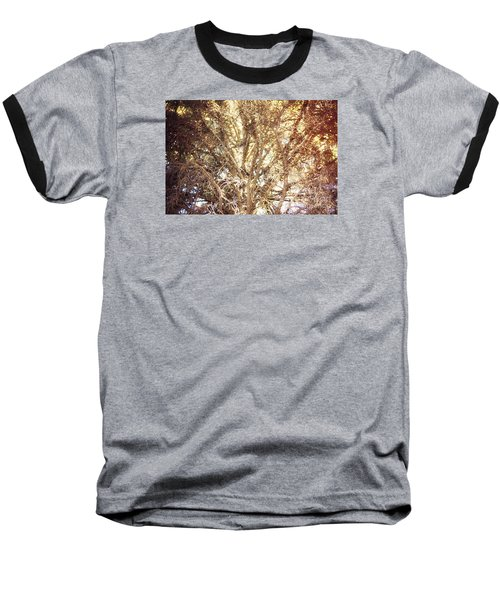 Beauty And The Branches Baseball T-Shirt by Janie Johnson