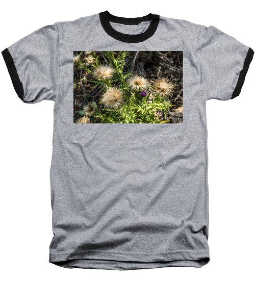 Baseball T-Shirt featuring the photograph Beauty In Aging by Sue Smith