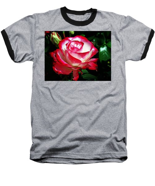 Baseball T-Shirt featuring the photograph Beauty Rose by Joseph Frank Baraba
