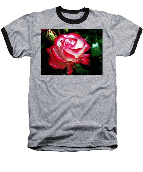 Beauty Rose Baseball T-Shirt by Joseph Frank Baraba