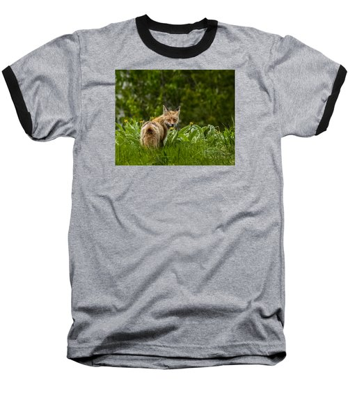 Baseball T-Shirt featuring the photograph Beaver Creek Mama Fox In Spring by Yeates Photography