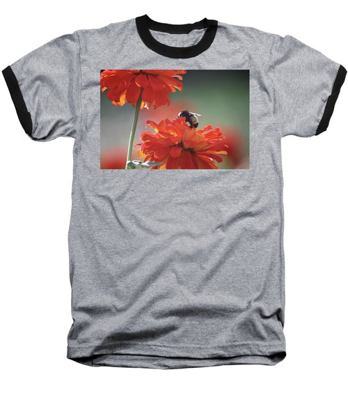 Bee And Flower I Baseball T-Shirt