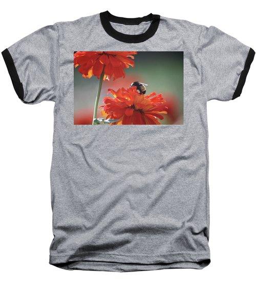 Bee And Flower I Baseball T-Shirt