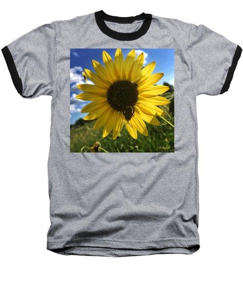 Bee And Sunflower Baseball T-Shirt