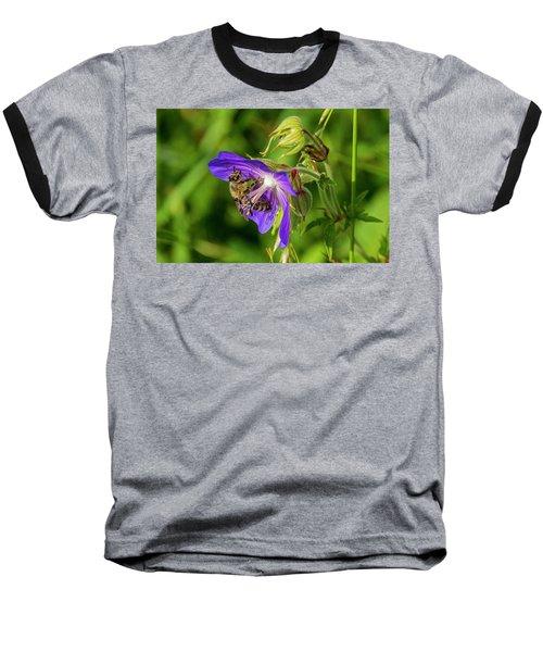 Bee At Work Baseball T-Shirt by Ulrich Burkhalter