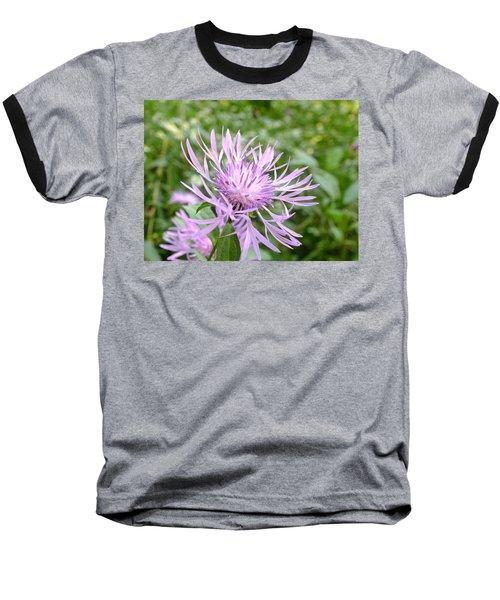 Bee Balm Baseball T-Shirt