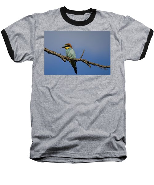 Bee Eater  Baseball T-Shirt