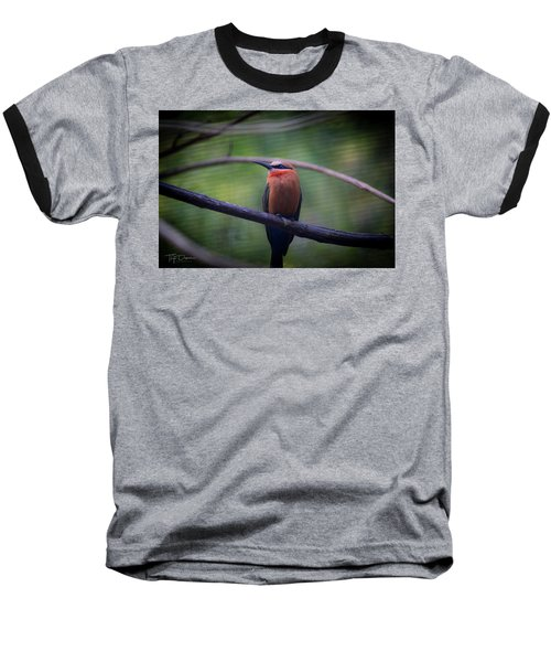Bee-eater Baseball T-Shirt