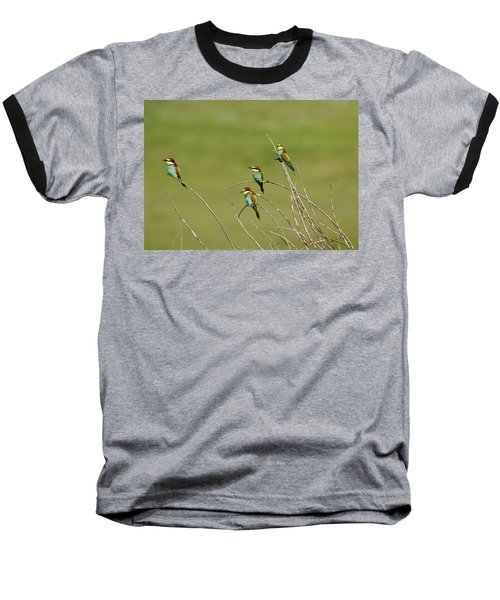 Bee Eaters  Baseball T-Shirt