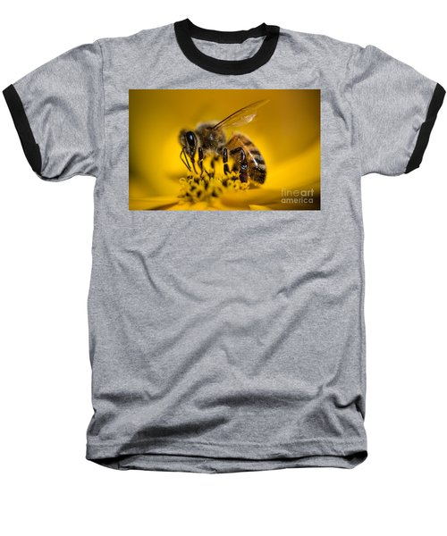 Bee Enjoys Collecting Pollen From Yellow Coreopsis Baseball T-Shirt