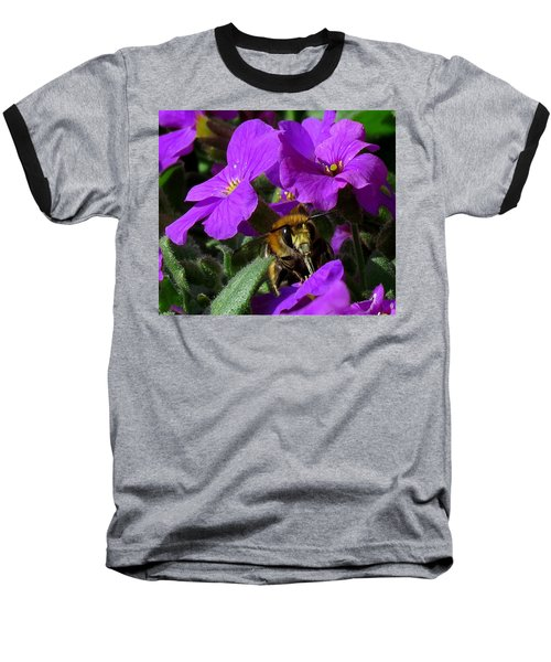 Bee Feeding On Purple Flower Baseball T-Shirt