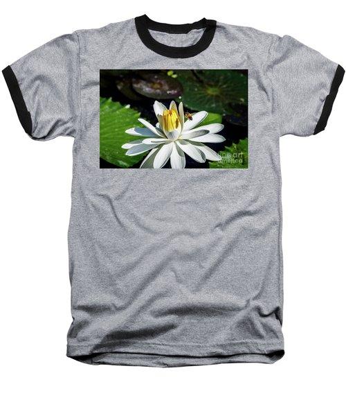 Bee In A Flower Baseball T-Shirt